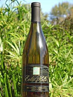 2005_oregon_pinot_gris_large.jpg